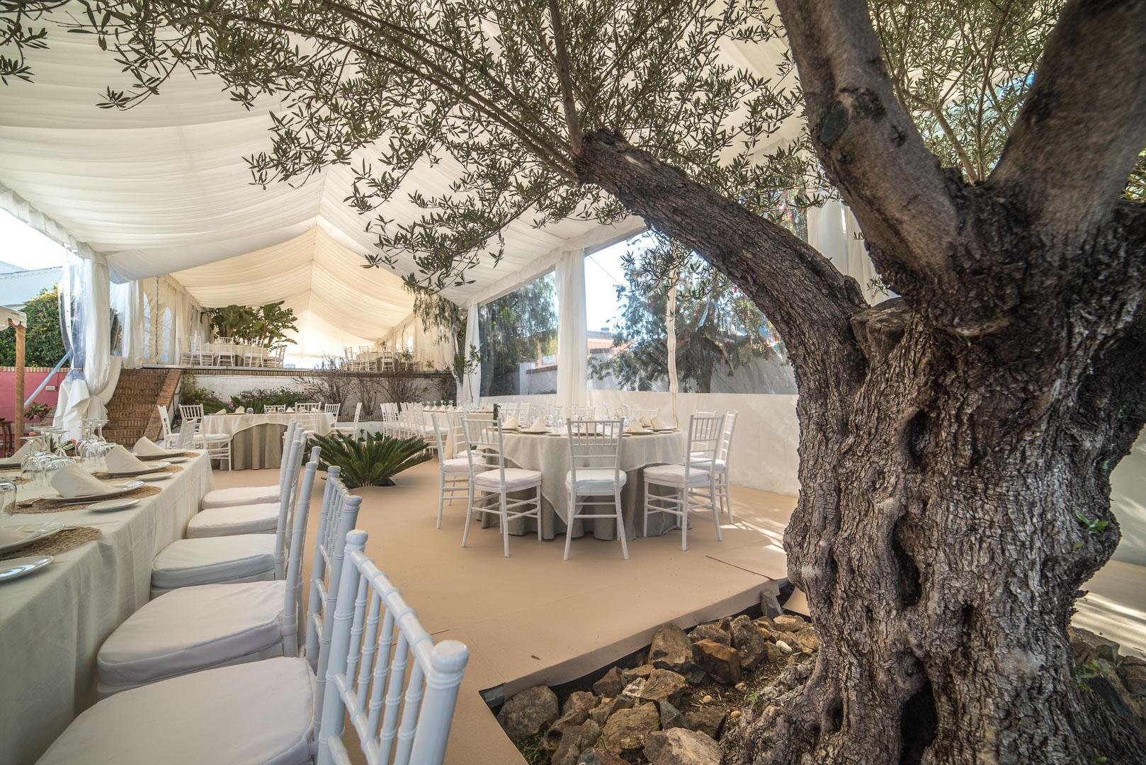 alquiler-carpas-bodas-diferentes-en-Asturias-2